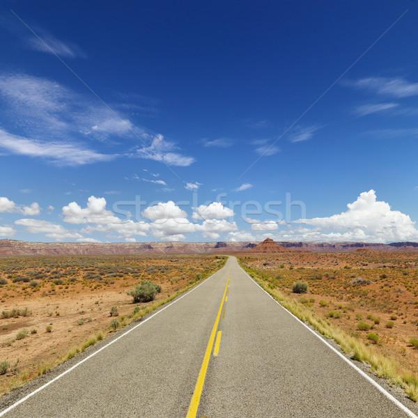 Two Lane Highway Through Desert Stock photo © iofoto