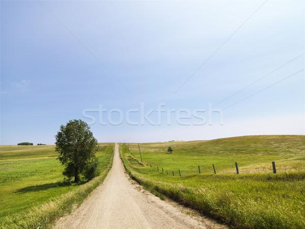 Rural country road. Stock photo © iofoto