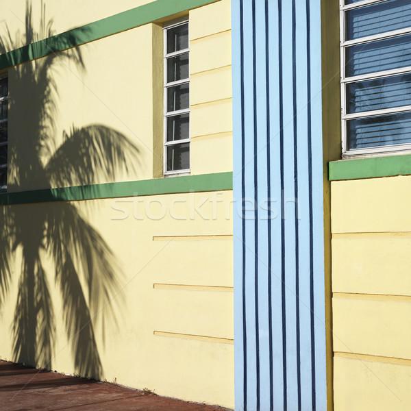 Art deco Miami Florida palmboom schaduw detail Stockfoto © iofoto