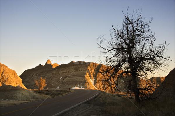Dél-Dakota festői park fa természet utazás Stock fotó © iofoto