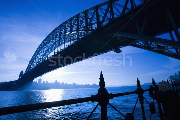 Sydney haven brug schemering Stockfoto © iofoto