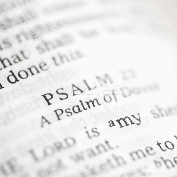 Psalm 23. Stock photo © iofoto