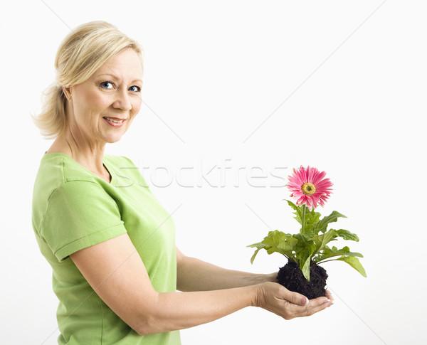 Femme souriante Daisy vue de côté souriant adulte Photo stock © iofoto