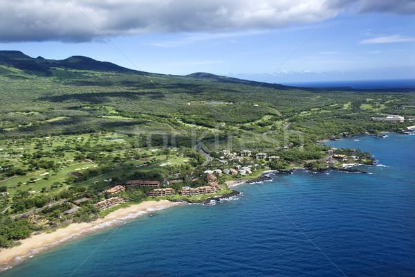 Aerial of coastline. Stock photo © iofoto