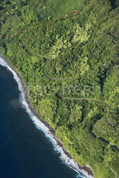 Maui coast with road. Stock photo © iofoto