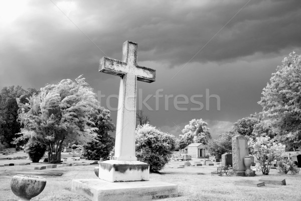 Infrared graveyard scene Stock photo © iofoto