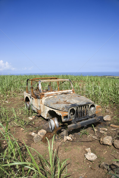 Abandoned Car in Field Stock photo © iofoto