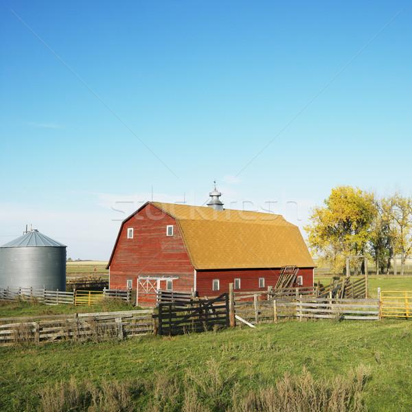 Piros csőr kerítés mező épület szín Stock fotó © iofoto