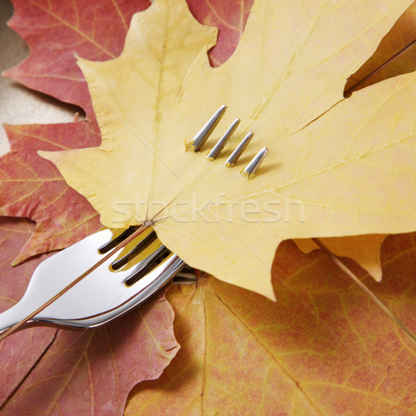 Maple leaf on fork. Stock photo © iofoto