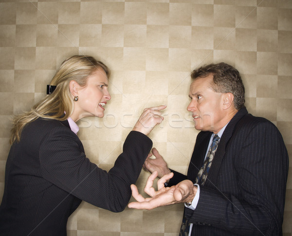 Businesswoman Reprimanding Businessman Stock photo © iofoto