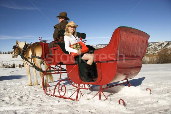 Horse-drawn sleigh ride. Stock photo © iofoto