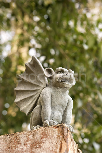 Gargoyle statue. Stock photo © iofoto