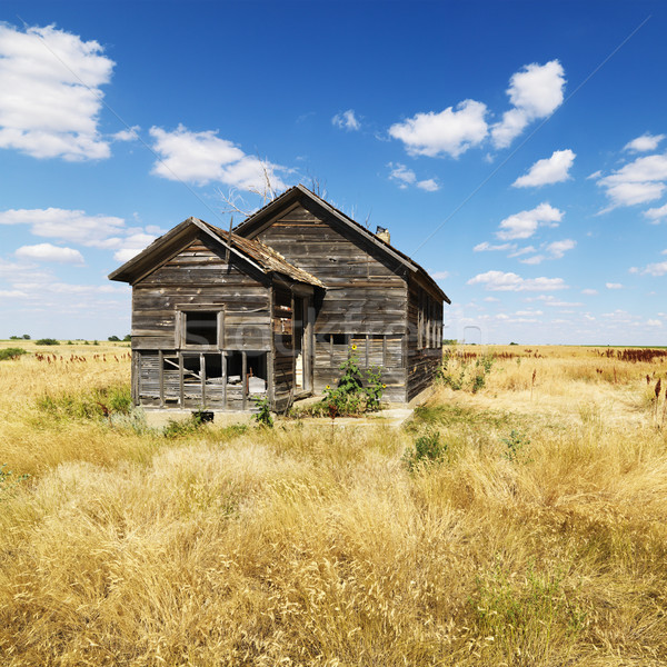 Dilapidated Abandoned House Stock photo © iofoto