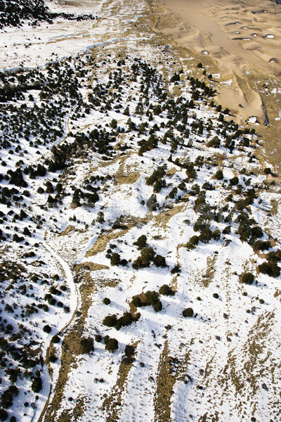雪 カバー 砂の 平野 コロラド州 ストックフォト © iofoto