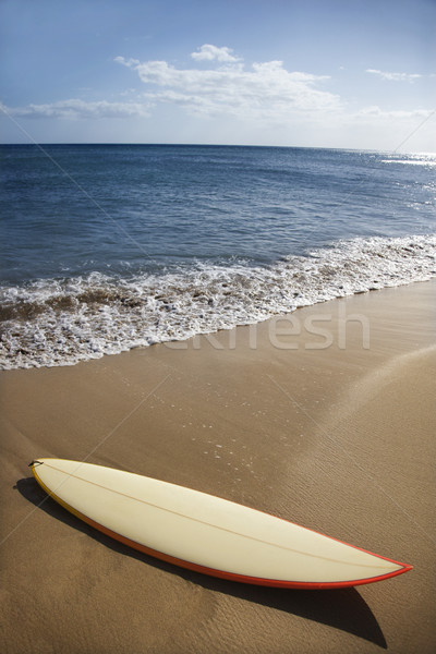 Surfboard on Maui beach. Stock photo © iofoto