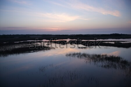 Sky reflecting in marsh. Stock photo © iofoto