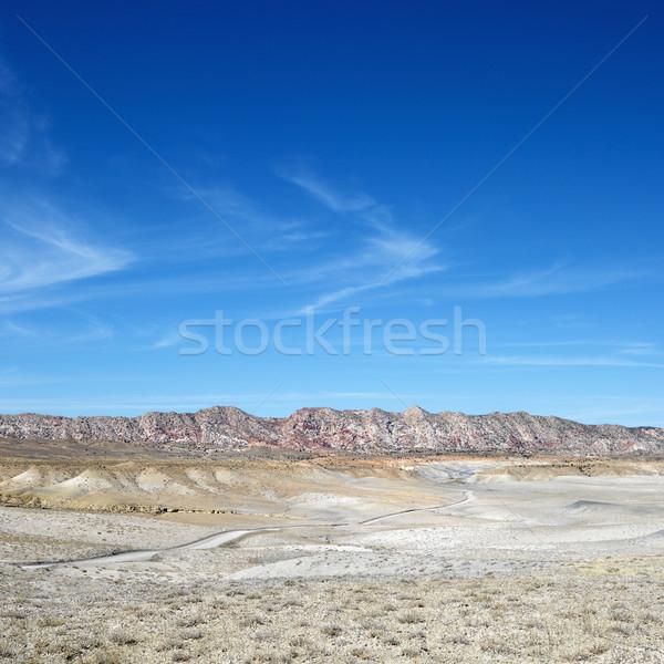 Canyon Utah woestijn landschap reizen Stockfoto © iofoto