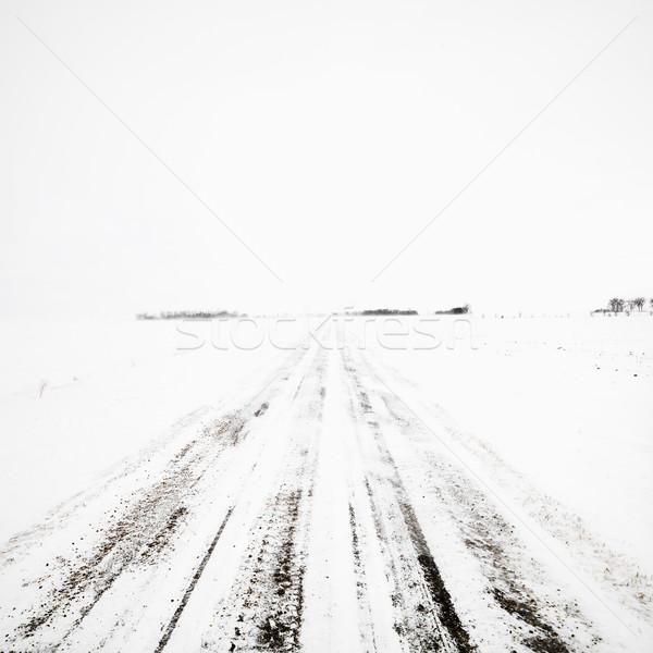 Földút tél vihar elhagyatott hóvihar égbolt Stock fotó © iofoto