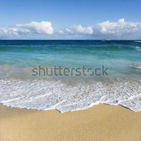 Maui, Hawaii beach. Stock photo © iofoto