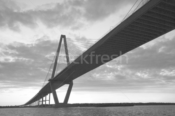 Cooper River Bridge in Charleston, South Carolina. Stock photo © iofoto