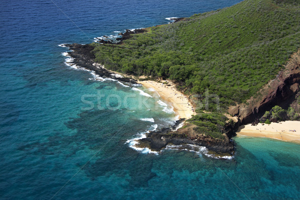 Maui beach. Stock photo © iofoto