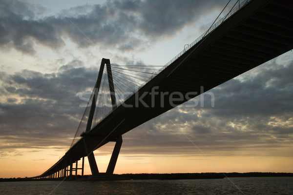 Rivier brug South Carolina zonsondergang kleur architectuur Stockfoto © iofoto