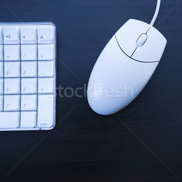Computer keyboard and mouse. Stock photo © iofoto