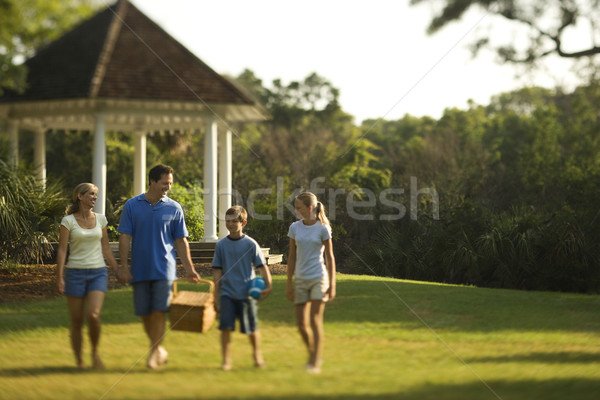 Family in park. Stock photo © iofoto