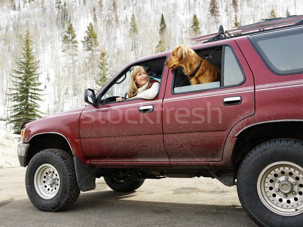 Donna cane sporco suv guardando fuori Foto d'archivio © iofoto