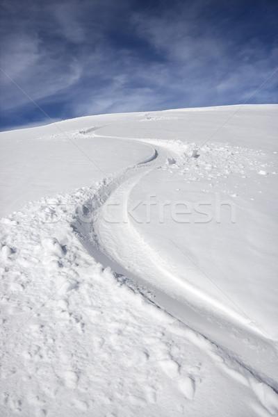 Snowmobile trail. Stock photo © iofoto