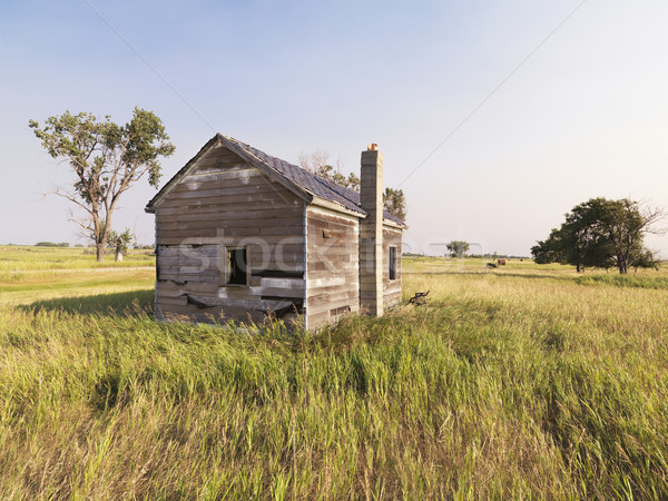 Dilapidated house in field. Stock photo © iofoto