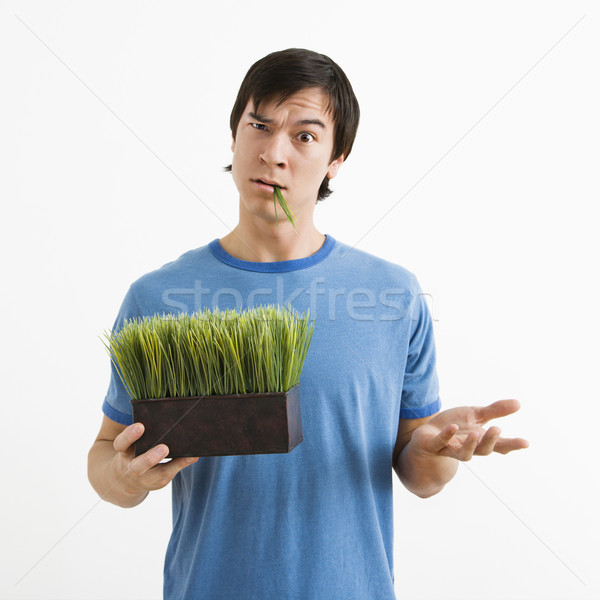 Man holding pot of grass. Stock photo © iofoto