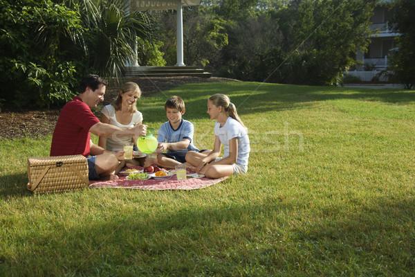 Family having picnic. Stock photo © iofoto