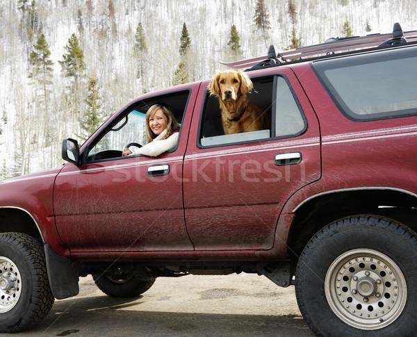 Donna cane sporco suv guardando Foto d'archivio © iofoto