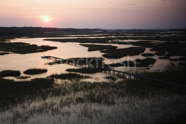 Pier in wetland. Stock photo © iofoto