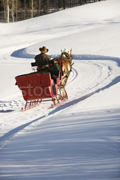 Homem cavalo trenó Foto stock © iofoto