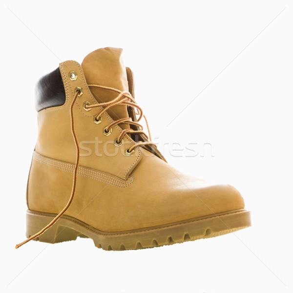 Lavoro boot uno abbronzatura colore pelle Foto d'archivio © iofoto