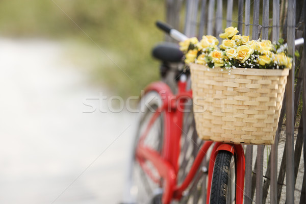 Stock photo: Bike with flowers.