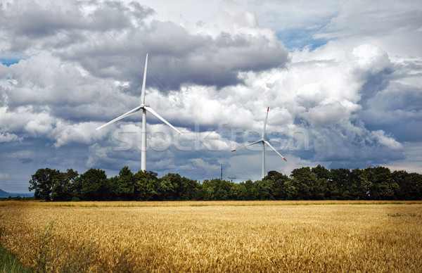 Agriculture landscape with wind turbines Stock photo © Ionia