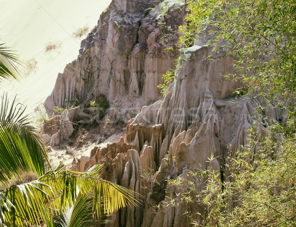 green landscape with palms and white sand rocks, fairy stream vi Stock photo © iordani