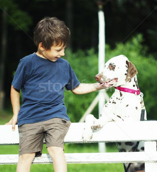 Mały cute chłopca dalmatyński psa zielone Zdjęcia stock © iordani