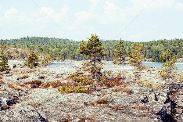 север природы пейзаж пород озеро Сток-фото © iordani