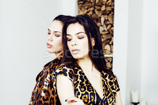 Stock photo: pretty stylish woman in fashion dress with leopard print together in luxury rich room interior, life