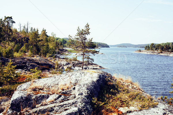 wild north nature landscape. lot of rocks on lake shore Stock photo © iordani