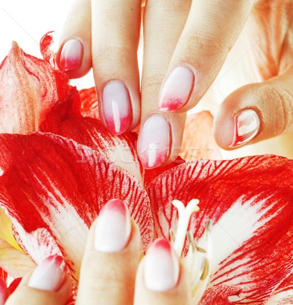 Szépség kezek rózsaszín terv manikűr tart Stock fotó © iordani