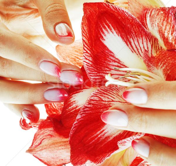 Beleza mãos rosa projeto manicure Foto stock © iordani