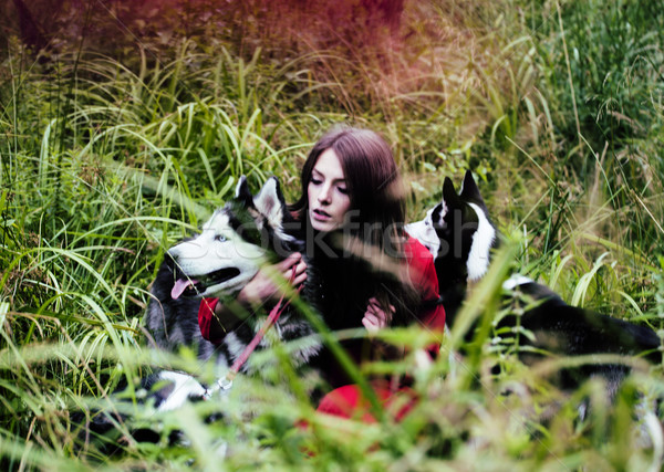 woman in red dress with tree wolfs, forest, husky dogs mystery p Stock photo © iordani