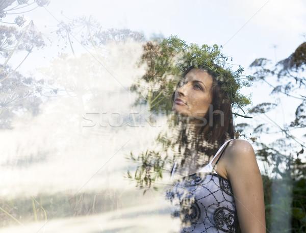 Portré csinos fiatal nő mező magas fű Stock fotó © iordani