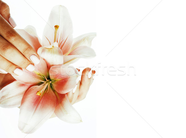 beauty delicate hands with manicure holding flower lily close up Stock photo © iordani