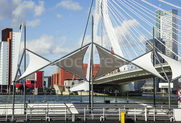 view to background of Rotterdam city harbour, future architectur Stock photo © iordani